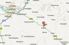 Elderly siblings assaulted during Limerick burglary