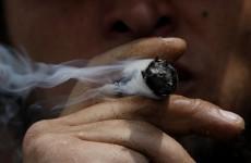 Uruguay's answer to drug problem: Nationalise the marijuana industry