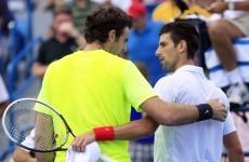 Djokovic gains revenge against del Potro to set up Federer final