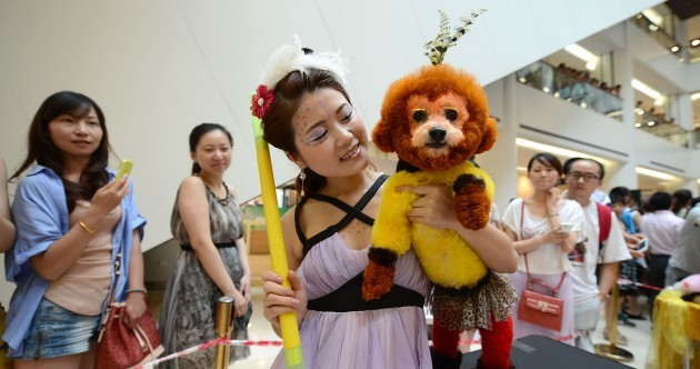 In pics: Fierce (and fluffy) competition at pet beauty pageant