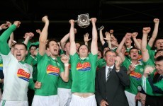Kilmallock are crowned Limerick hurling champions