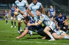 As it happened: Leinster v Cardiff Blues, RaboDirect Pro12