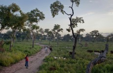 South Sudan expels UN rights investigator: officials