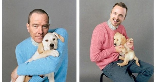 Brand new Breaking Bad promo poster... with puppies