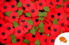 Column: 'Surely it's time Ireland embraced the memorial poppy'