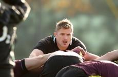 Heaslip to lead Ireland into Bok challenge