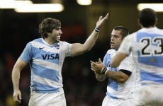 November tests: Lobbe eyes Irish scalp as Pumas seek to end year on a high