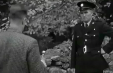 Video: Tackling Irish Christmas tree thefts in 1962