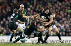 November tests: McCarthy plans to replicate Bok-bashing form