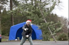 Get lumbered up for Christmas Tree Throwing Championship