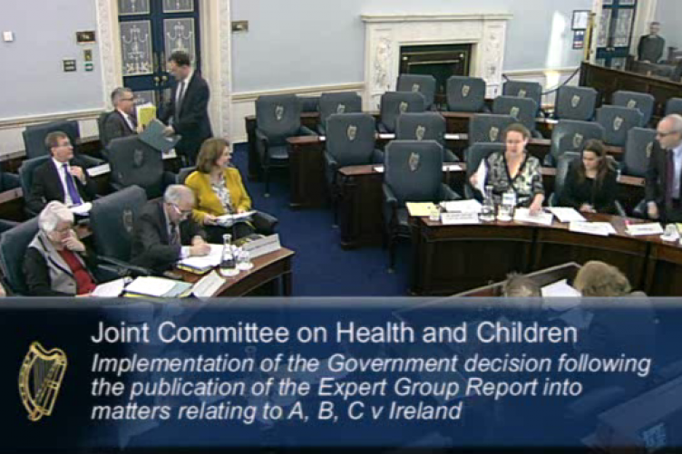 Jennifer Schweppe, Ciara Staunton and Simon Mills (right) attending the Oireachtas this morning.