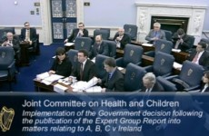 13 things we learned from the Oireachtas abortion hearings this week