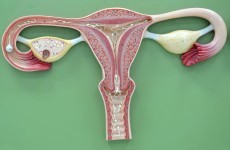 Women over 45 'less likely to have smear tests'