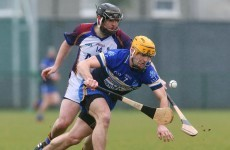 Fitzgibbon Cup Group D: DIT defeat UL