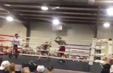 VIDEO: The hardest knock out punch you've ever seen