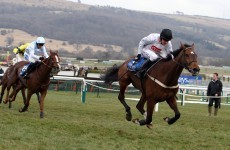 Spirit River to sit Cheltenham out