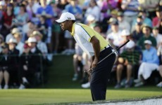 POLL: Should Tiger Woods have been disqualified?