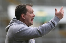 Davy Fitz calls for 10-team top tier in hurling league