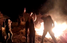 Man tries Harlem Shake, falls into bonfire