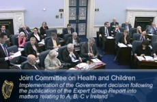 Committee to decide if advocacy groups should attend abortion law hearings