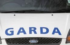 Skeletal remains found in Limerick nature reserve