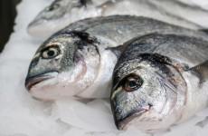 "Coveney makes ""major step"" for Irish fishermen"