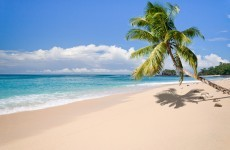 Join the discussion: What are your desert island discs?