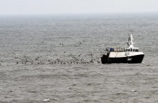 EU may change rule requiring fish to be thrown back into sea