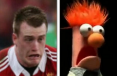 'Beaker' Hogg thanks BOD as Farrell is clearly threatened by new out-half