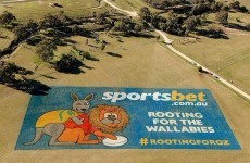 'Rooting for the Wallabies' ad causes controversy in Oz ahead of first Test