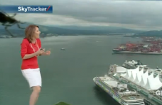 Weather forecaster terrified by on-camera giant spider