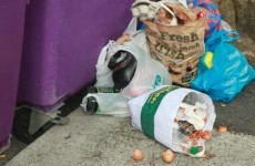 """Video shows scale of """"unbearable"""" illegal rubbish dumping in Dublin"""