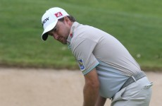 Brilliant McDowell shares the lead at French Open