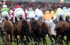 A Bluffer's Guide to… the Cheltenham Festival