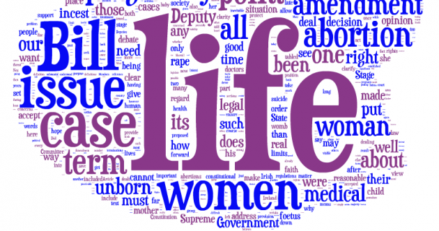 The abortion debate: the words that mattered