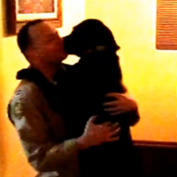 Dog recognises owner after six months away