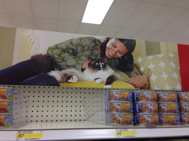 A mysterious guest has been adding googly eyes to various signage around the store. This time s/he hit the pet aisles. - Imgur