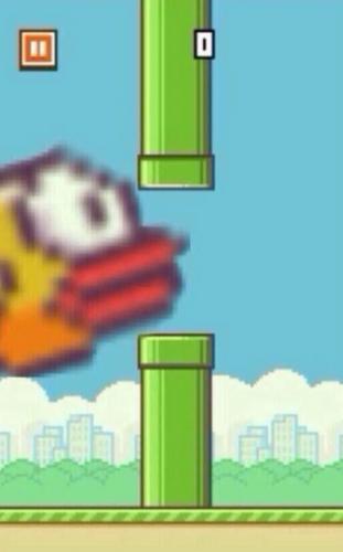 flappybirds5