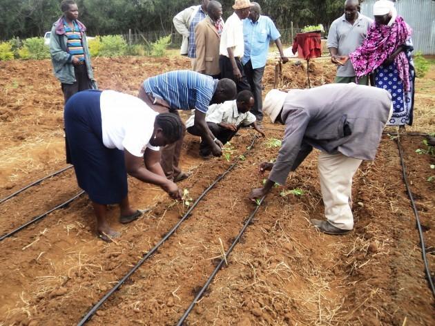 Training on our farm