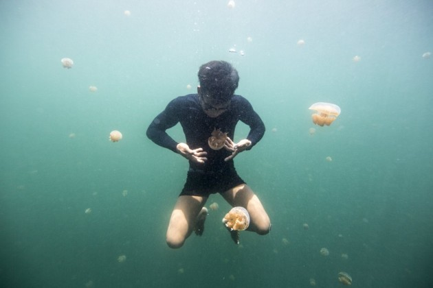 hong-kong-fishing-companies-introduced-the-cyanide-to-the-bajau-according-to-morgan-it-was-a-trap-they-give-the-bajau-the-cyanide-and-the-bajau-have-to-pay-back-the-fee-in-fish-but-they-can-never-fi