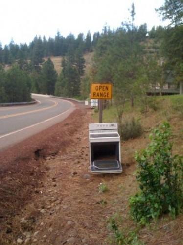 funny-literal-photo-open-range
