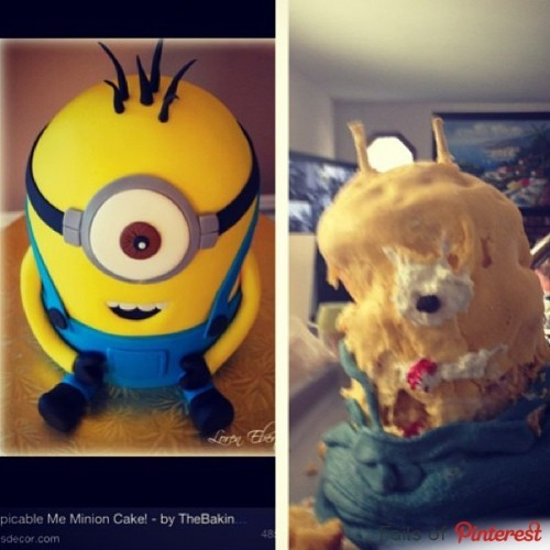 Cake Fails: 14 People Who Are Worse At Baking Cakes Than You · The
