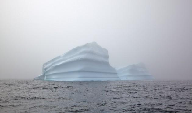 arctic picture 2