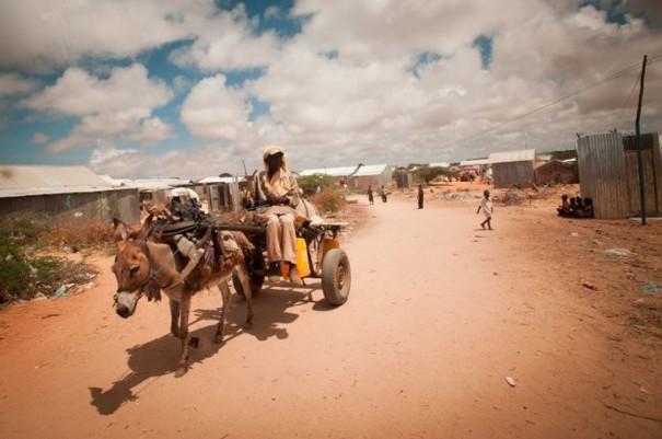 somalia at war essay Somalia essays: over 180,000 somalia essays, somalia term papers, somalia research paper, book reports 184 990 essays, term and research papers available for.