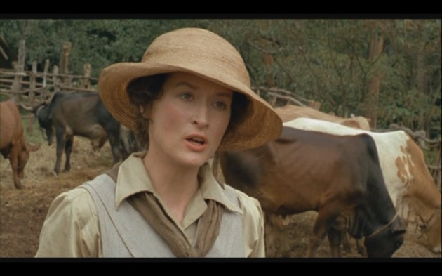 -Out-of-Africa-Screencaps-meryl-streep-30316999-1280-800