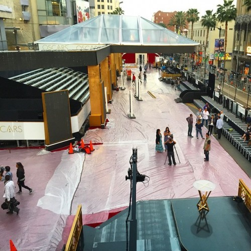 The red carpet is taking shape for the big show on Sunday. #redcarpet #oscars #hollywoodblvd