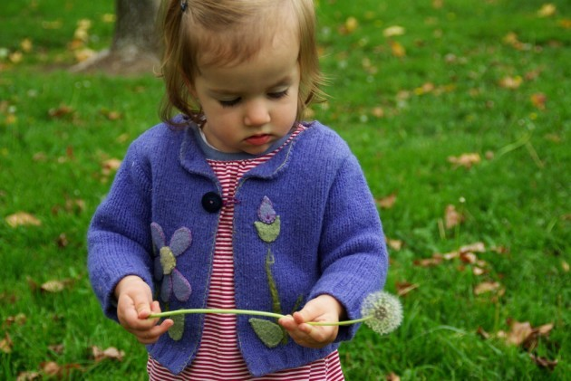 toddler with dandelion