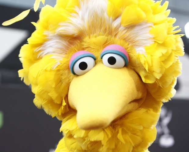 Mary Robinson big bird