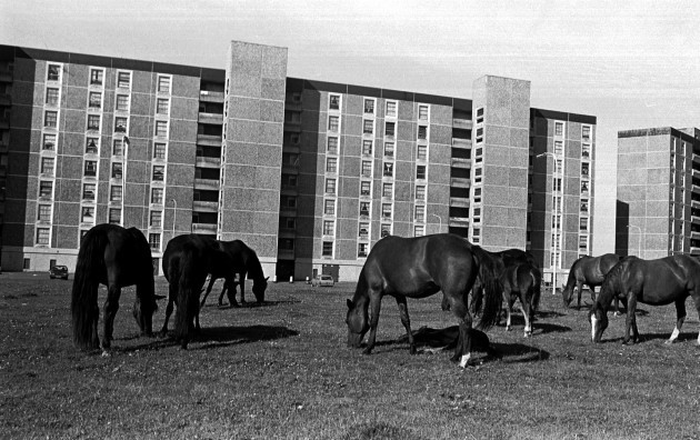BALLYMUN COMPLEX AREA HOUSING ESTATES
