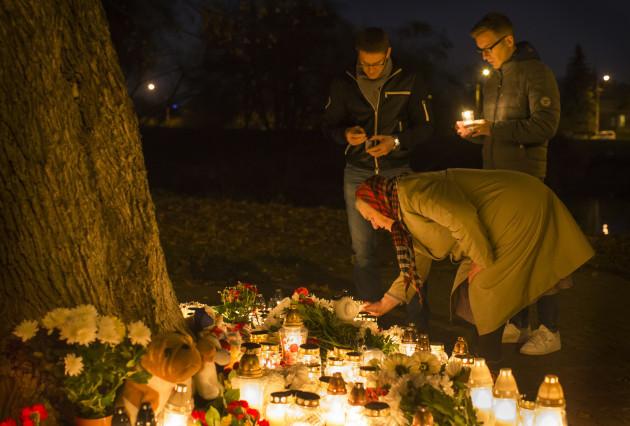 Lithuania Egypt Russian Plane Crash